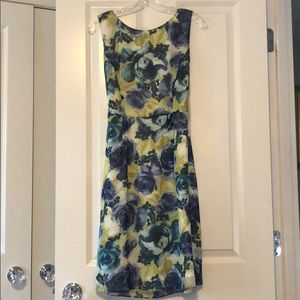 Blue and yellow floral brooks brothers dress